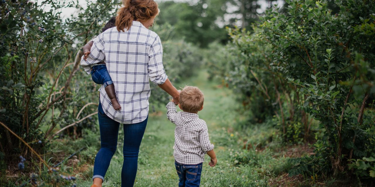 https://tykely.com/wp-content/uploads/2021/05/mom-holding-toddlers-hand-and-carrying-baby-at-a-pick-your-own-blueberry-farm-in-the-summer_t20_vLWXpp-1280x640.jpg
